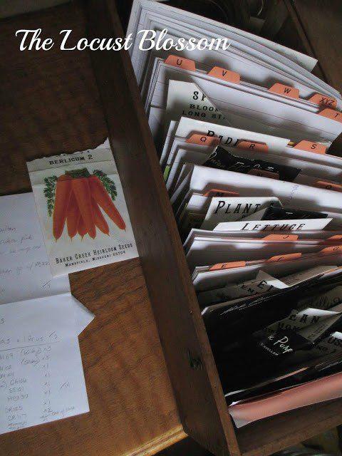 Homestead Blog Hop Feature - ordering seeds