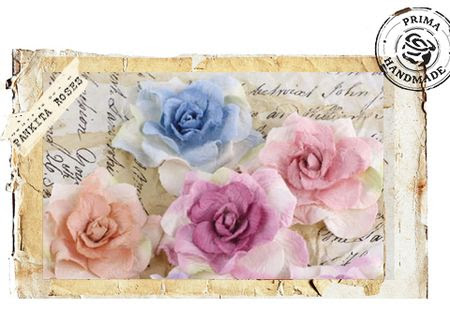 Pankita Roses