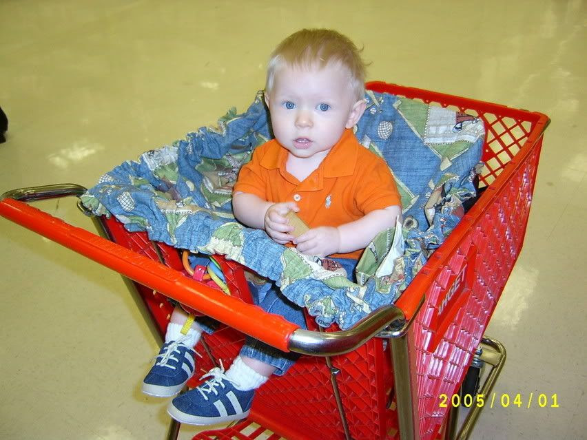 Gabriel's new shopping cart cover