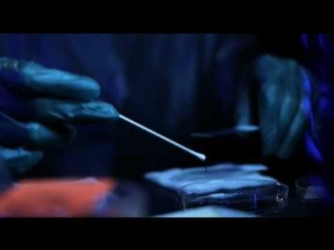 Horror Movie A Day: Virus X (2010)