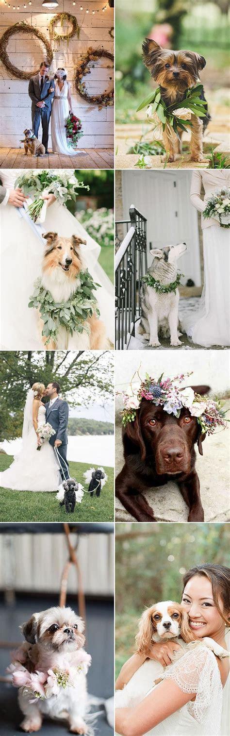 25  best ideas about Wedding Fur on Pinterest   Winter