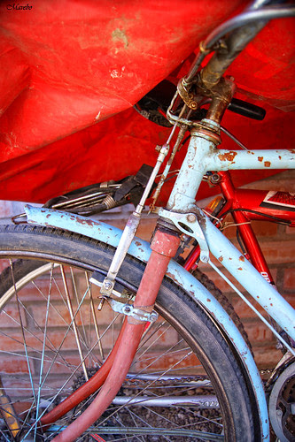 Bicycle by Alejandro Bonilla