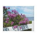 Lilacs on the Fence Canvas Prints