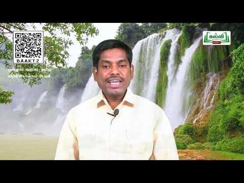 3rd Tamil எழில் கொஞ்சும் அருவி  பருவம் II  இயல் 6 பகுதி 1 Kalvi TV