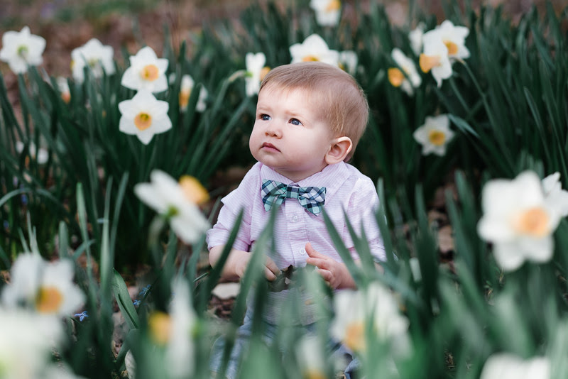Connors first birthday pictures with the rest of the Jensen family at Sinnissippi Gardens with beautiful spring flowers in bloom in Rockford, IL!