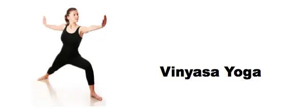 Αποτέλεσμα εικόνας για vinyasa yoga.