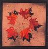Autumn's Shadows