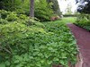 Path to the formal Garden
