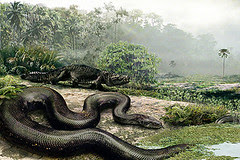 090204-01-giant-snake-pictures_big