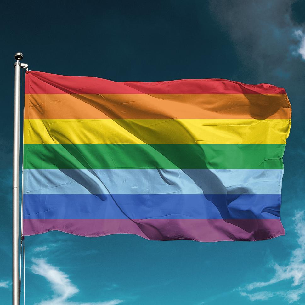 Image result for gay flag
