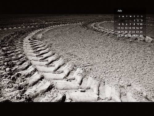 July 2010 Free Desktop Calendar Wallpaper