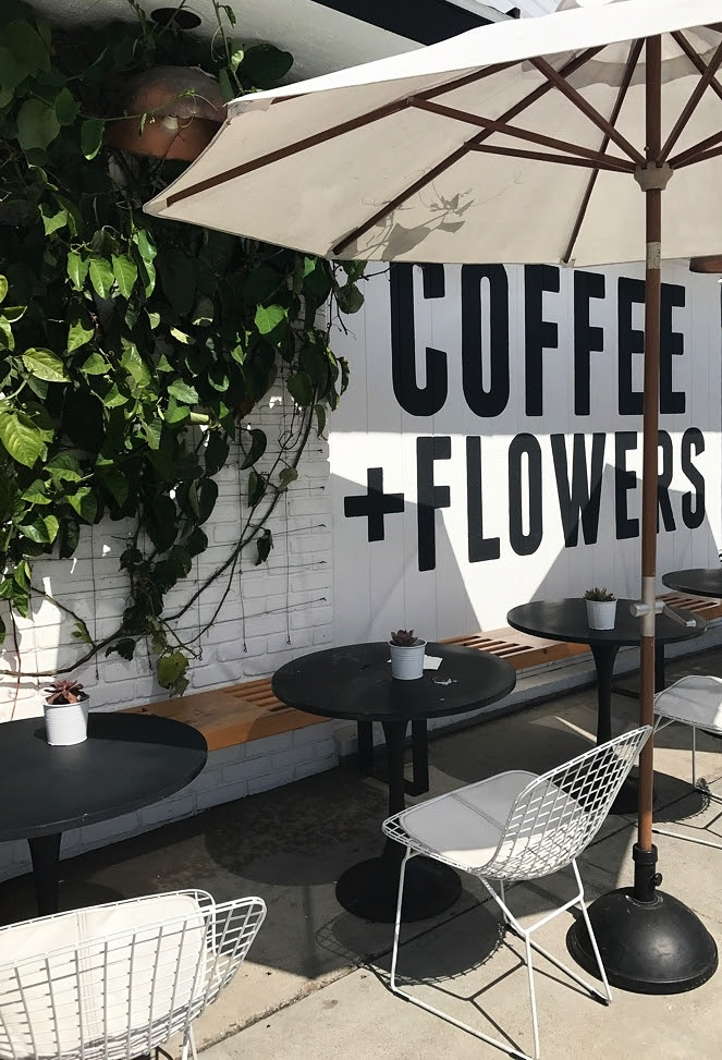 See My City An Instagram Guide To San Diego S Coffee Scene Shannon Hammond Photography