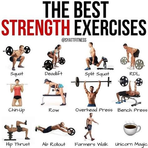 strength exercises   full body workout