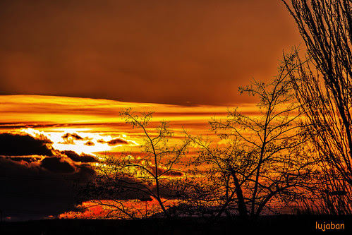 Red sunset 5... by lujaban