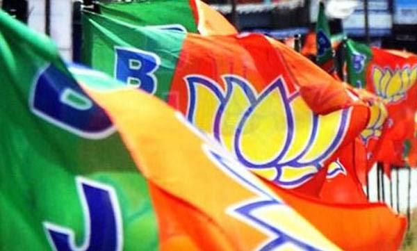 uploads/news/2019/03/293699/BJP.jpg