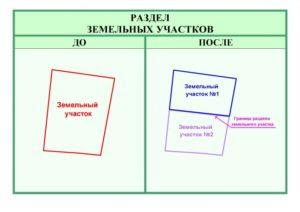 Все нюансы раздела земельного участка: порядок и необходимые документы
