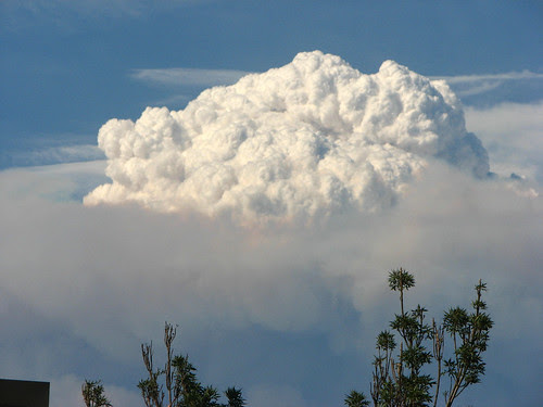 crazy smoke cloud