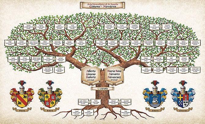 Descubriendo El árbol Familiar Periodico El Mundo Noticias Para