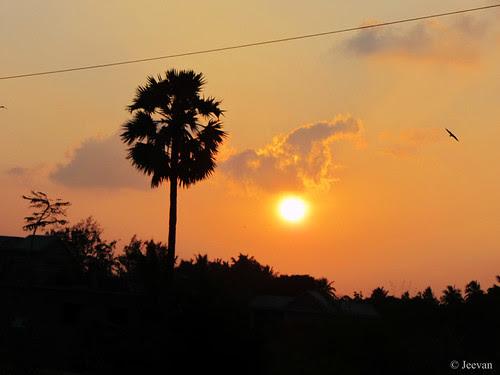 Sunset @ ECR