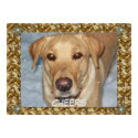Cheers Golden Lab Bows Card