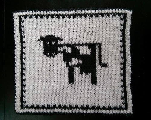 Double knit cow white side