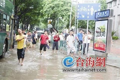 """厦门市民暴雨过后街头抓鱼被指""""好欢乐""""(组图)"""
