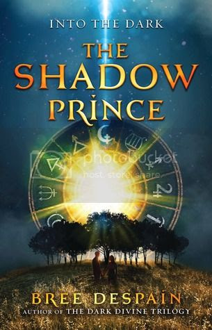 https://www.goodreads.com/book/show/16150914-the-shadow-prince