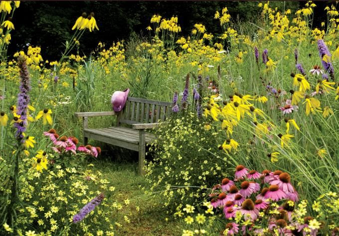 Bed Head - Purposefully unstyled outdoor spaces are the result of intentionally working within the natural landscape.#gardentrend