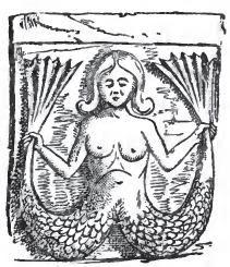 Curious Myths p 471 Melusina.jpg
