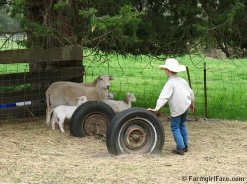 Little sheep wrangler 1 - FarmgirlFare.com