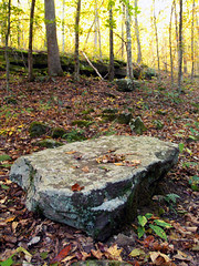 Alum Cove rocks