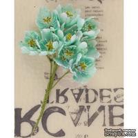 Набор цветов Prima - Lady Bird - Turquoise - ScrapUA.com