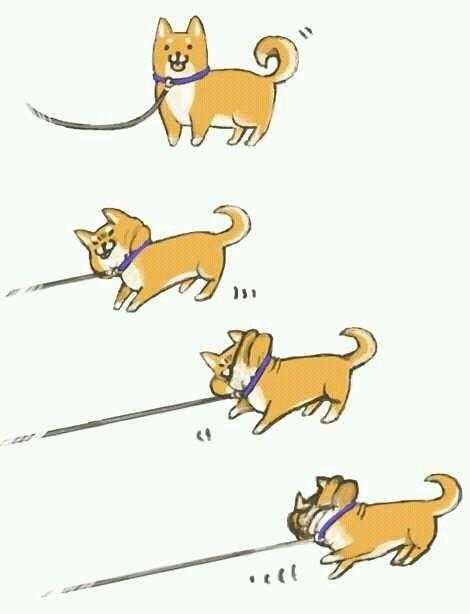 画像犬の散歩でありがちなことを描いたイラストがtwitterで話題 Qlay