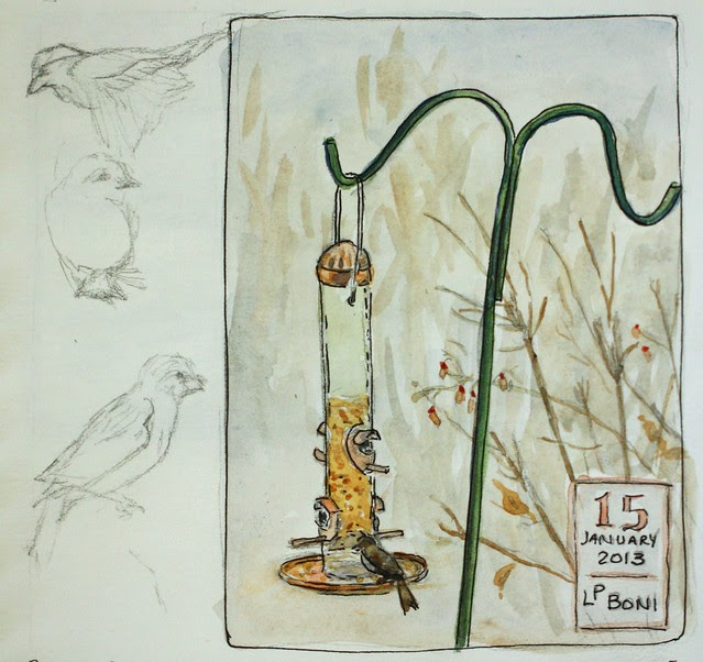 Birdfeeder - Watercolor Sketch