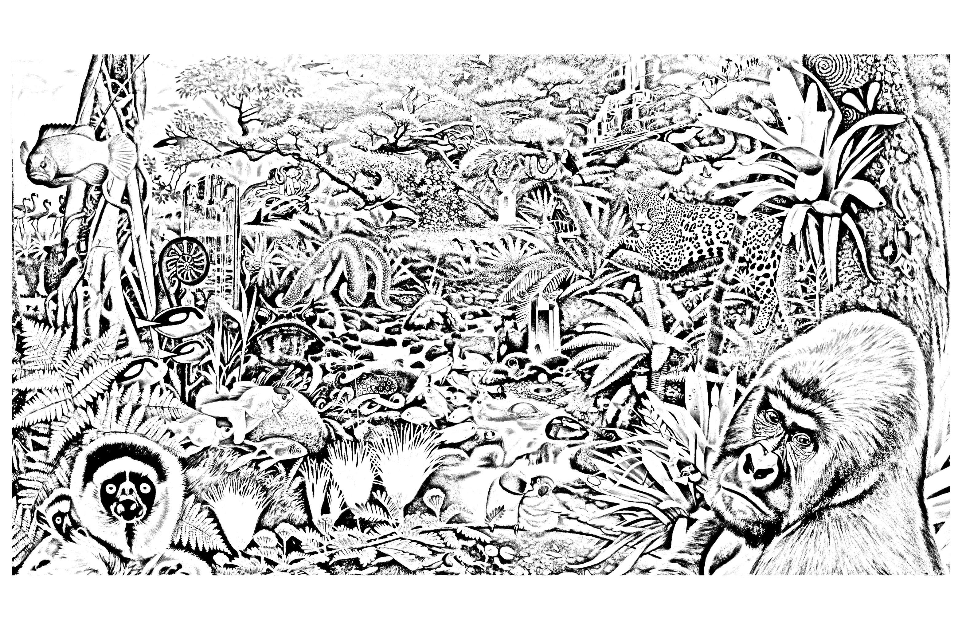 Belle Coloriage Les As De La Jungle A Imprimer