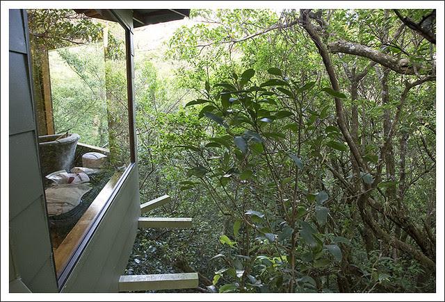 Hidden Canopy Treehouse Monteverde 6