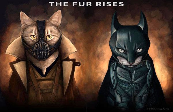 So I assume that having a cat dressed in Selina Kyke's black leather suit would be a bit...redundant?