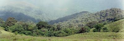 Rainforests of Pushpagiri wildlife sanctuary as seen from Girigadde below Kumara Parvata peak in Western Ghats