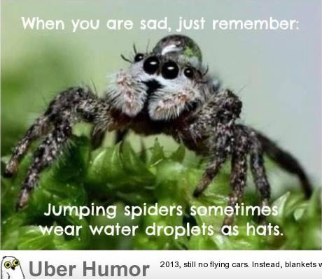 I Feel Better Now Funny Pictures Quotes Pics Photos Images