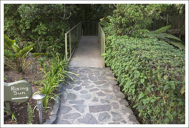 Hidden Canopy Treehouse Monteverde 2