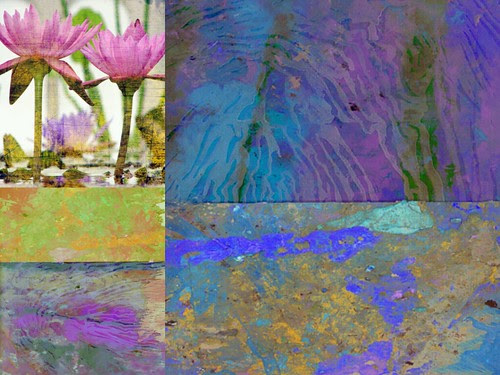 "Zen Scape_""Water lily""_ Art by Ricki Mountain"