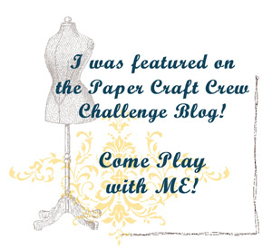 Paper Craft Crew Challenges