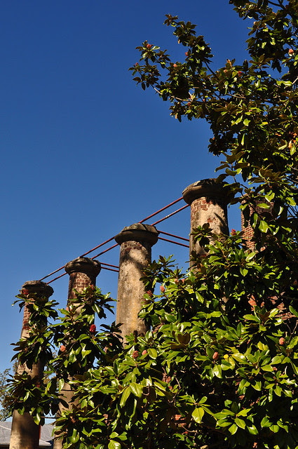 Barboursville Ruins (2)