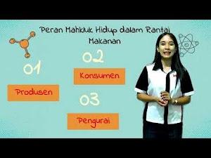 Video Pembelajaran SD