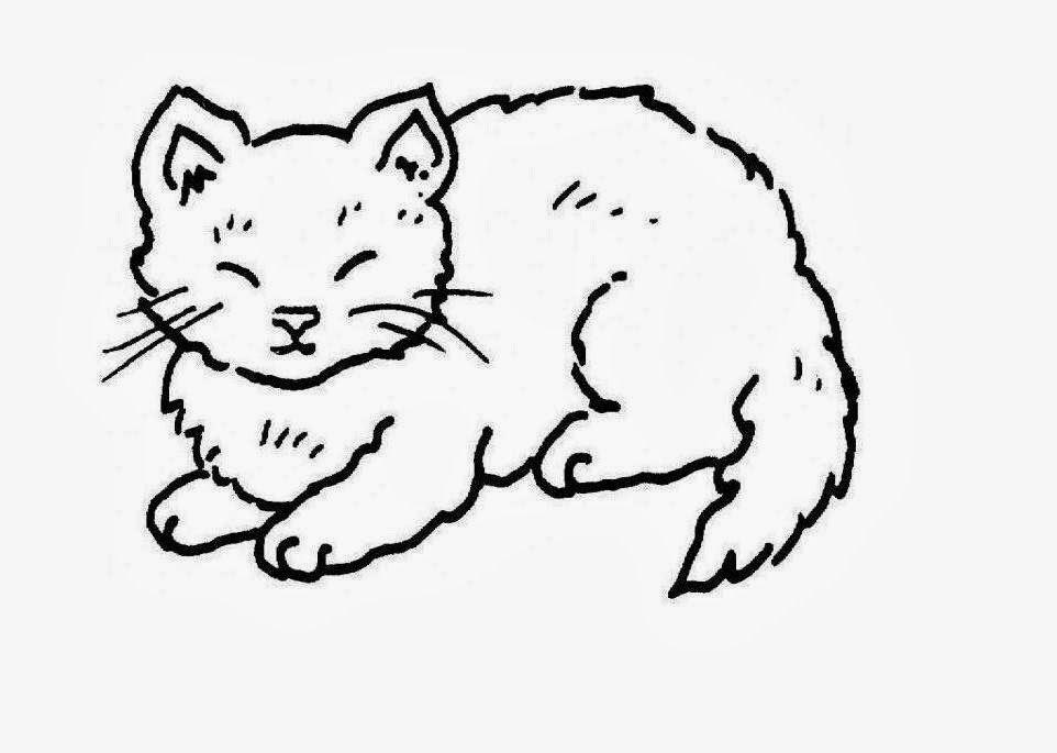 Cartoon Cat Face Outline Cat S Blog