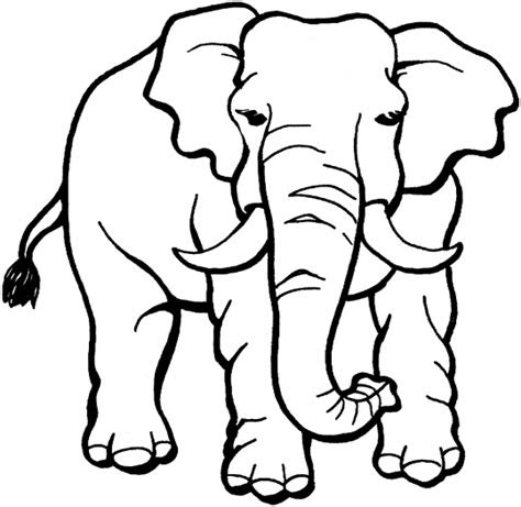 jungle animals coloring pages disney coloring pages