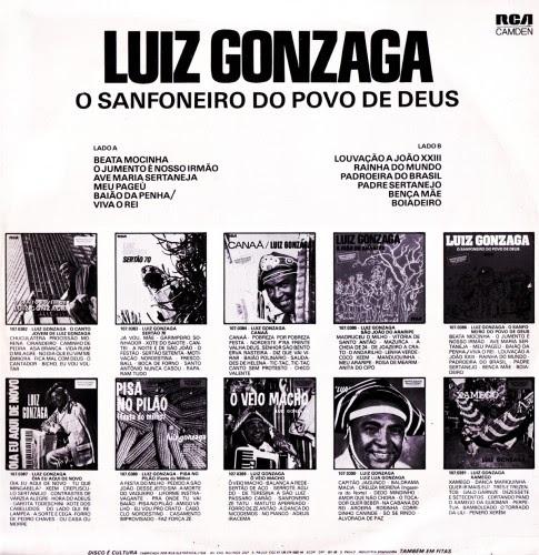 luiz_sanfoneiro_verso
