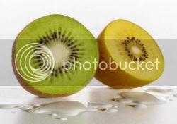 Buah kiwi merupakan buah yang menyehatkan karena kiwi mengandung Vitamin C yang cukup  Manfaat buah kiwi bagi kesehatan