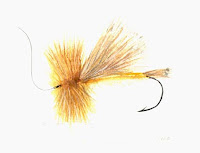 Fishing Fly Golden Stone