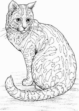 wuppsy  coloring pages  kids biggest printable